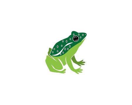 Frog cartoon icon silhouette logo vector illustration