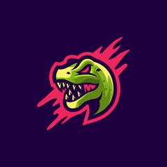 dragon logo design vector illustration