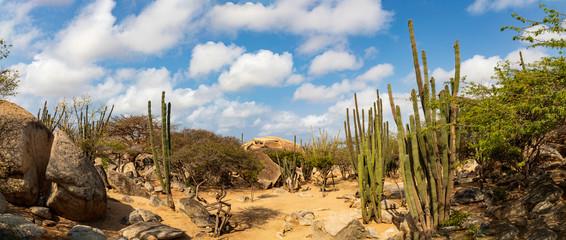 Auf der Insel Aruba Casibari-Felsformationen , Panorama