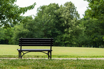 Bench in the park, at the foot of the pedestrian path. Rear view - image