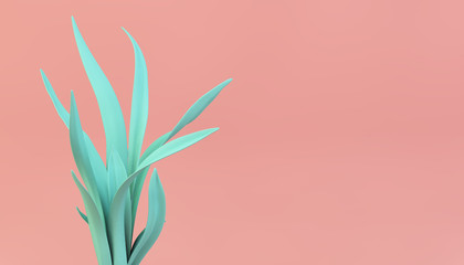 vivid color plant on pink background