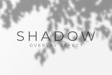 Shadow overlay effect. Transparent soft light and shadows from plant branches, leaves and foliage. Mockup of transparent shadow overlay effect and natural lightning Wall mural