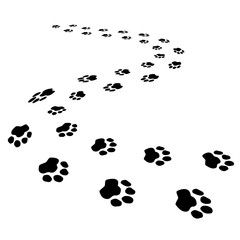 Cute dog or forest bear steps black seamless brush strokes isolated on white 3d path. Animal foot prints, pet silhouette paw imprint trails. Decorative idea for pet clinics, store decorative banners.