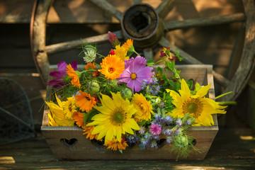 Fototapete - Colorful wild flower bouquet in a garden