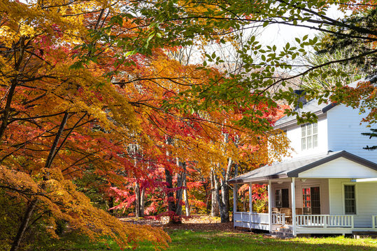 Karuizawa autumn scenery view, one of best-known resort villages in Japan. colorful tree with red, orange, yellow, green, golden colors around the country house in sunny day, Nagano Prefecture, Japan