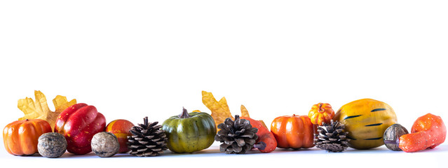 Panorama of autumn decoration with fruits, pine cones, nuts, leaves and pumpkins on white background