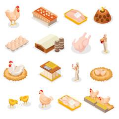 Isometric Chicken Icon Set