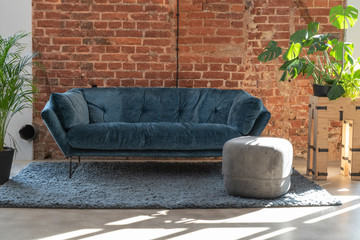 Navy sofa in the living room with plants and brick wall background with copy space..  Modern...