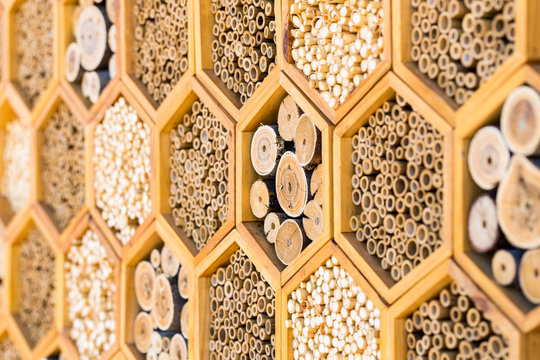 Geometric patterns bee hotel habitats with hollow tubes