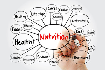 Nutrition mind map flowchart with marker, health concept for presentations and reports