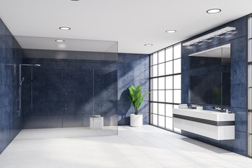 Luxury blue bathroom with sink and shower
