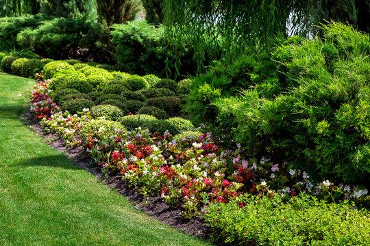 well maintained park with flower bed of green spaces, plants on sunny summer garden with landscaping, nobody.
