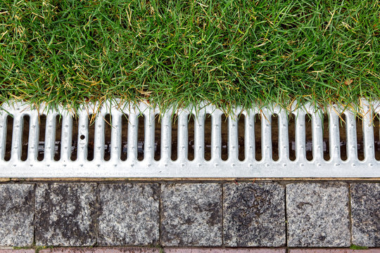 iron grate of a storm drainage system on the side of a footpath made of pavers near a green lawn top view.