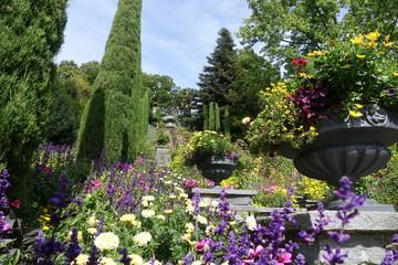 Fotobehang Lavendel 78465 Insel Mainau