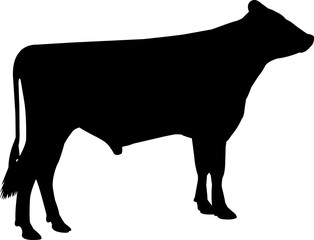 Dutch Belted Cow Vector Silhouette