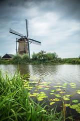 Aluminium Prints Mills Dutch windmill and surrounding landscape at Kinderdijk in Netherlands