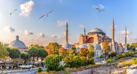 Beautiful view on Hagia Sophia in Istanbul, Turkey Wall mural