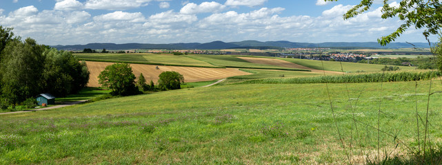 Foto op Canvas Pistache landscape with green field and blue sky