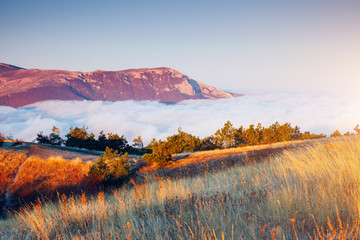 Picture of a scenic valley in morning light. Location Crimean peninsula.