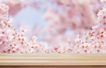 Wall Mural - Wood floor of pink sakura flower spring season background scene with copy space for display product and decorate design ads.