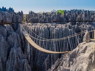 Impressive hanging bridge over the canyon at Tsingy de Bemaraha National Park, Madagascar Wall mural