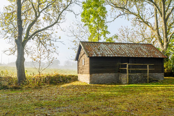 Wall Mural - Old mill in a rural landscape with fog in autumn