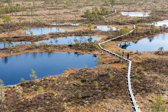 Footpath between lakes in Estonian bog