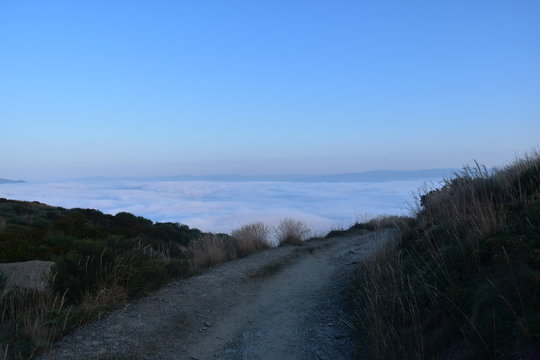 foggy morning road