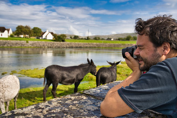 young photographer taking pictures of landscape with animals