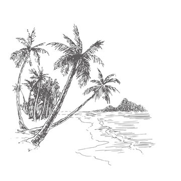 Vector vintage illustration of palm beach in engraving style. Hand drawn ink sketch of tropical landscape with trees and sea. Ocean coast