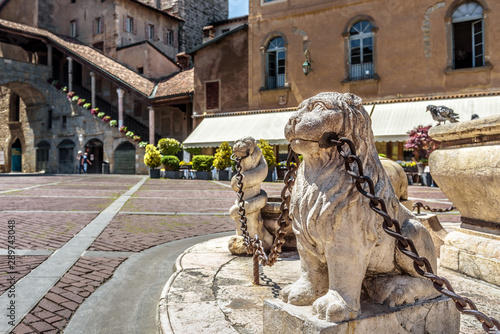 Fototapete Bergamo in summer, Italy. Piazza Vecchia in Citta Alta or Upper City. Lion statues with chains at the vintage fountain in the ancient Bergamo center. Antique architecture of Old town of Bergamo.