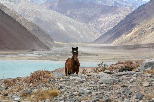 Cajon del maipo in Chile