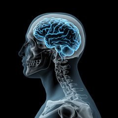 Sideview of Man with Skull and Glowing Brain