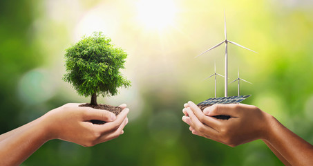 Wall Mural - hand holding tree with turbine and solar panel. concept eco energy and clean power