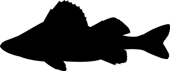 Yellow Perch Fish Silhouette Vector