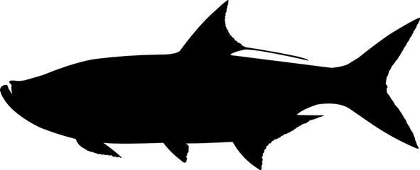 Tarpon Fish Silhouette Vector