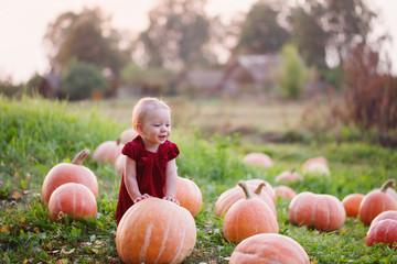 little girl with pumpkins on field Wall mural
