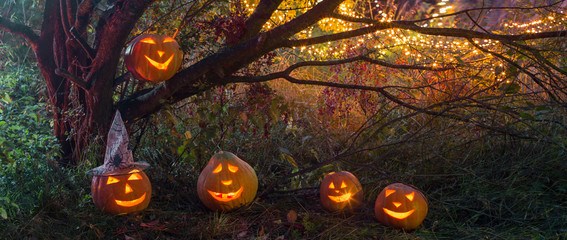 Halloween pumpkins in night forest
