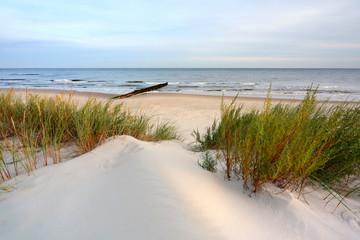 Wydmy na wybrzeżu Morza Bałtyckiego,plaża w Dźwirzynie,Polska.