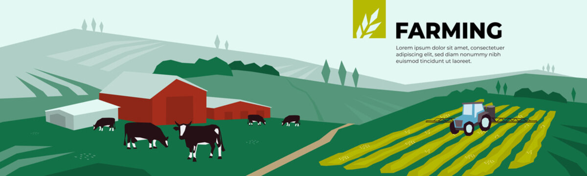 Vector illustration of farm land, pasture, cows, agricultural buildings, irrigation tractor spraying on field. Design for farming, livestock company. Template for banner, annual report, print, website