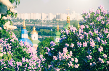 Wall Murals Kiev Kyiv city panoramic view with blooming lilac flowers and Orthodox churches on the banks of Dnipro River ( Dnieper ). Kiev in spring. Ukraine, Eastern Europe.