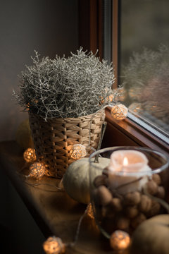 autumn cosy pumpkin, candles and autumn plants on window with led lights bokeh