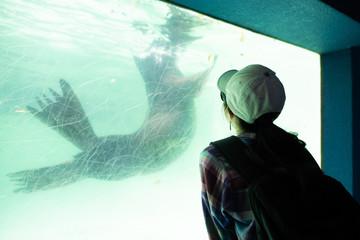 Fototapeta 水槽を見る女性