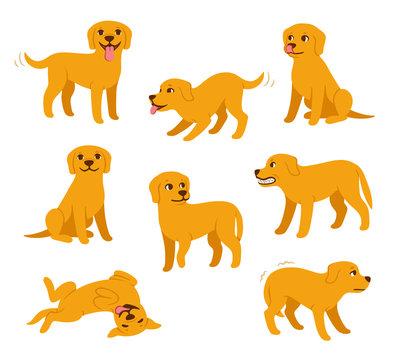 Cartoon dog poses set