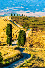 Landscape with Gladiator road and Cypress trees in Tuscany, Italy, Summer
