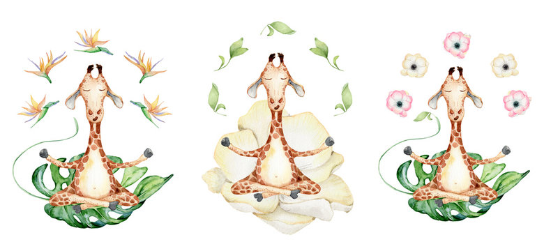 Cute watercolor geraffe with tropical flowers in yoga position