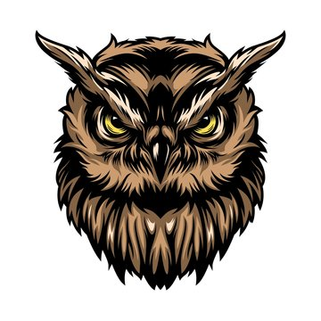 Colorful concentrated wise owl template