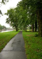Podebrady - lane in the park