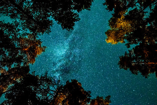 when you wish upon a star..
