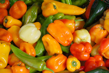 Close-up full frame view of a variety of colorful organic peppers displayed at a farmers market stand